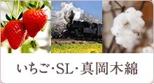 いちご・SL・真岡木綿